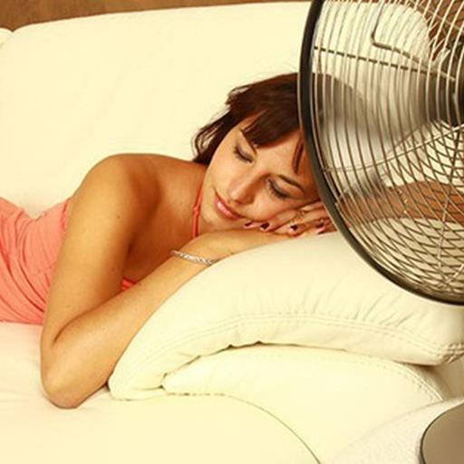 Có một kiểu người không thể ngủ được nếu thiếu quạt máy, dù là mùa đông rét buốt