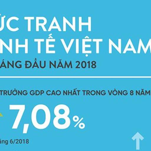 [Infographic] Bức tranh kinh tế 6 tháng đầu năm qua các chỉ số