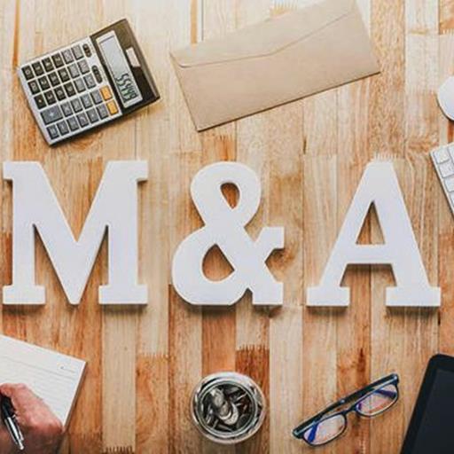 """Những thương vụ M&A lội ngược dòng: """"Ta"""" mua """"Tây"""""""